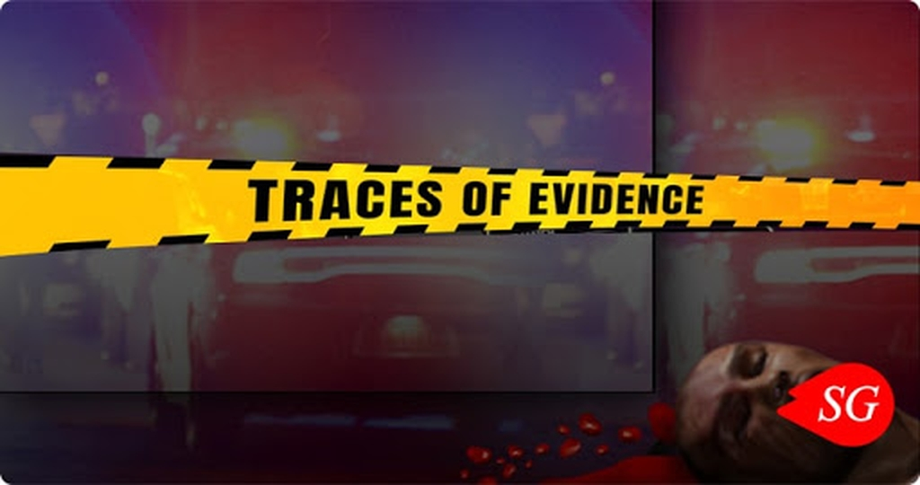 The Traces of Evidence Online Slot Demo Game by Genii