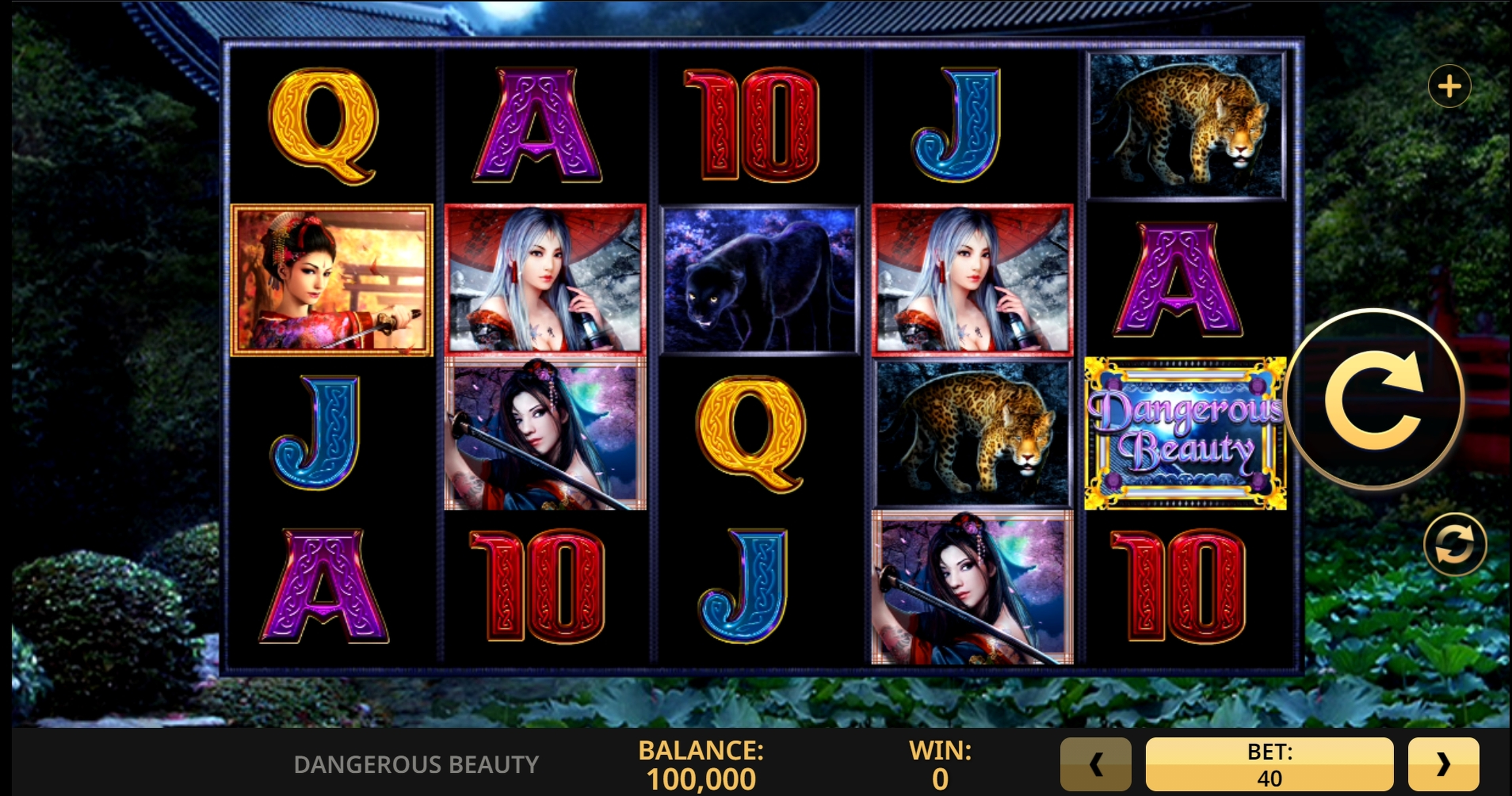 Reels in Dangerous Beauty Slot Game by High 5 Games