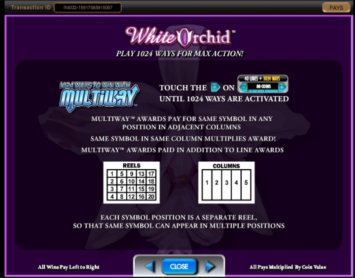 Info of White Orchid Slot Game by IGT