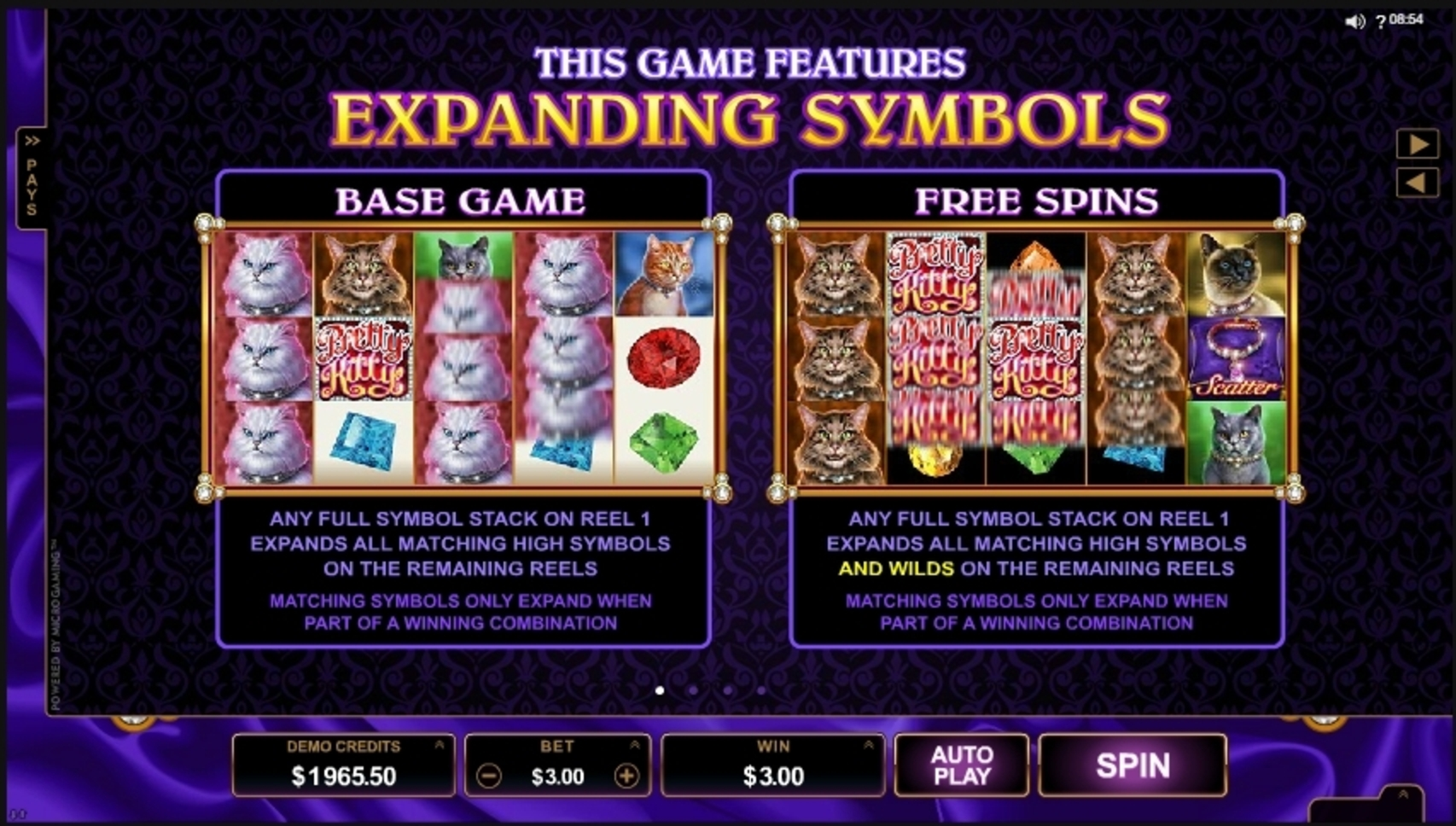 Info of Pretty Kitty Slot Game by Microgaming