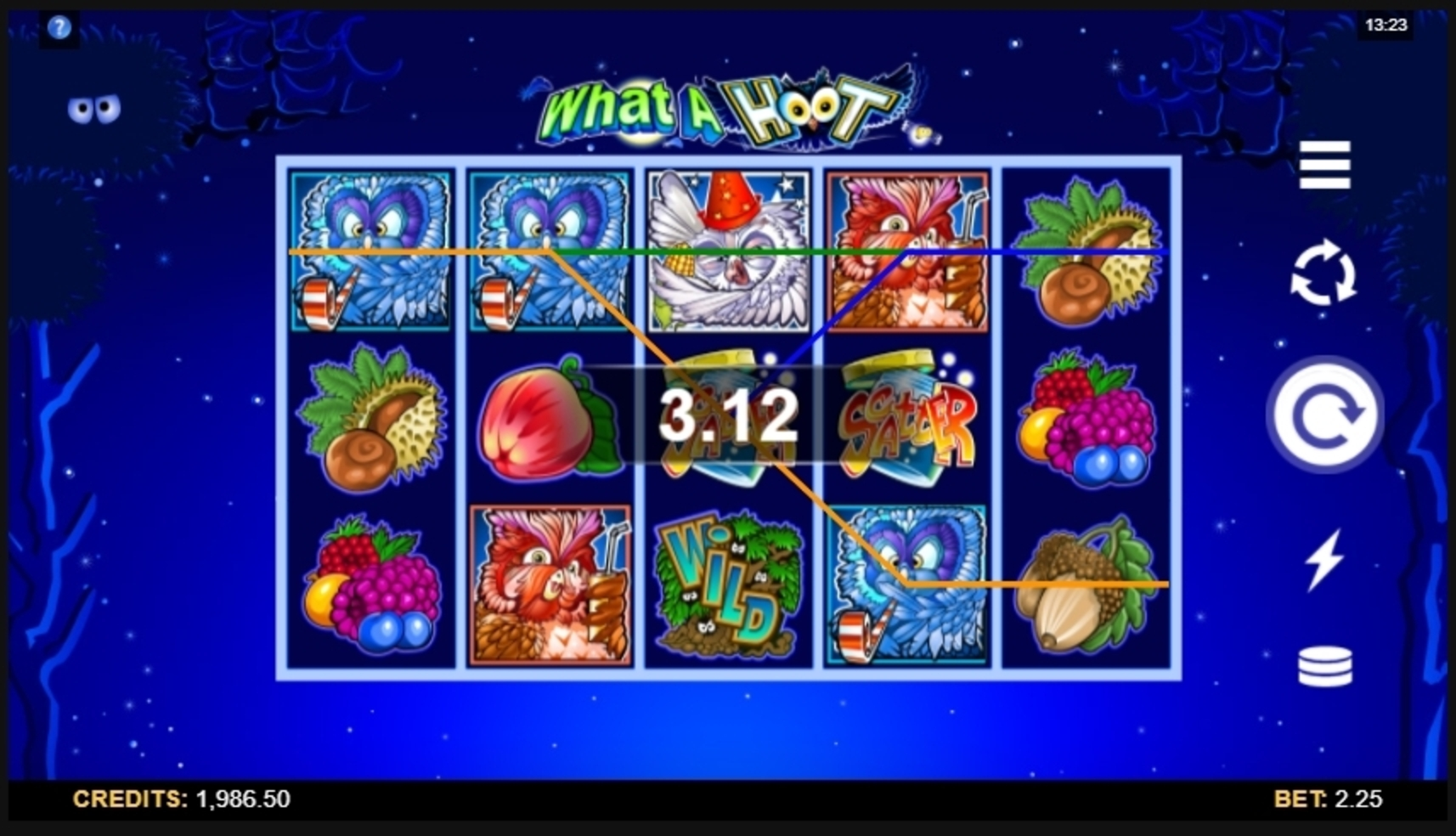 Win Money in What a Hoot Free Slot Game by Microgaming