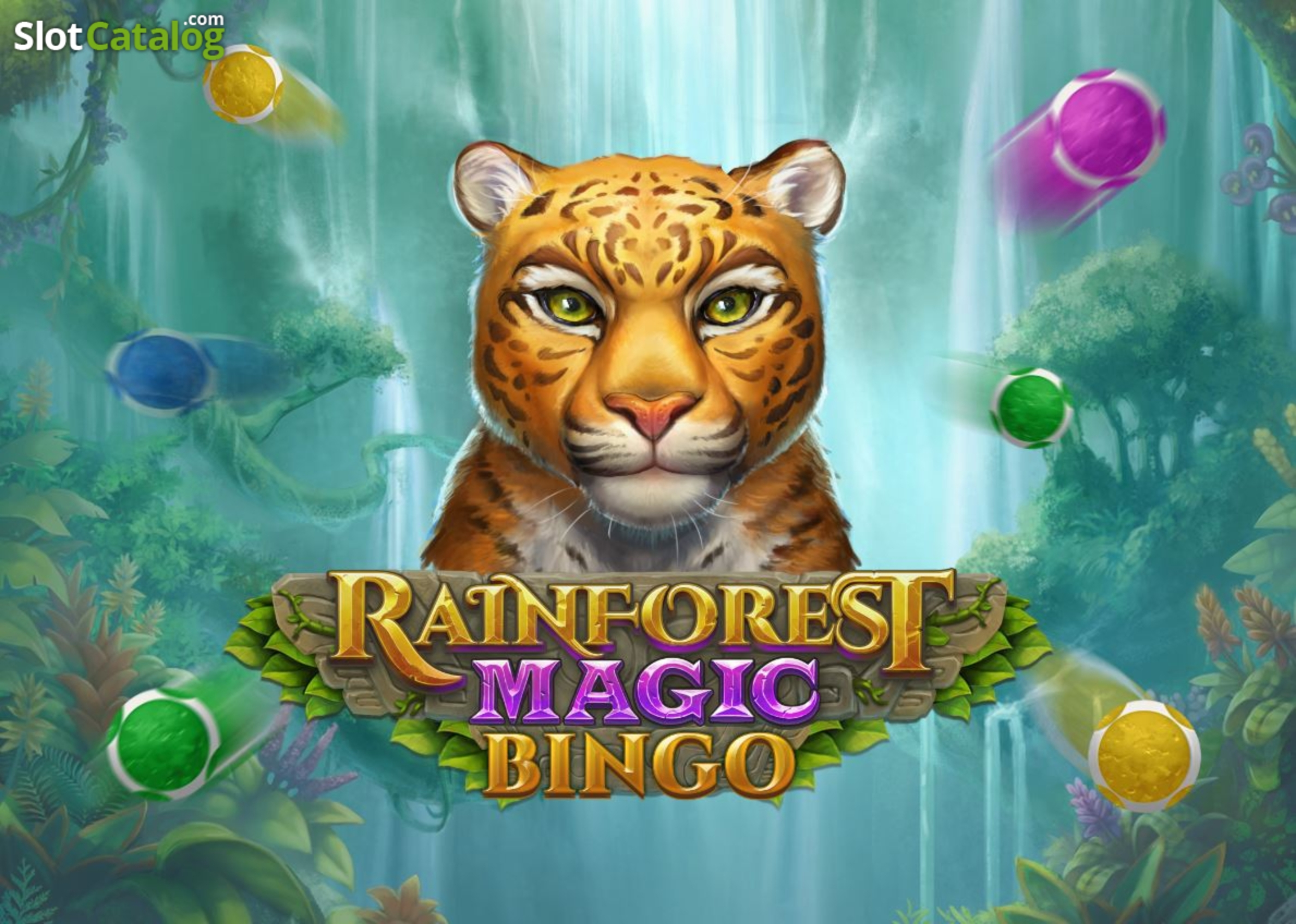 Info of Rainforest Magic Bingo Slot Game by Play'n Go