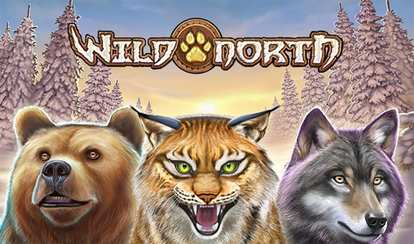 The Wild North Online Slot Demo Game by Playn GO