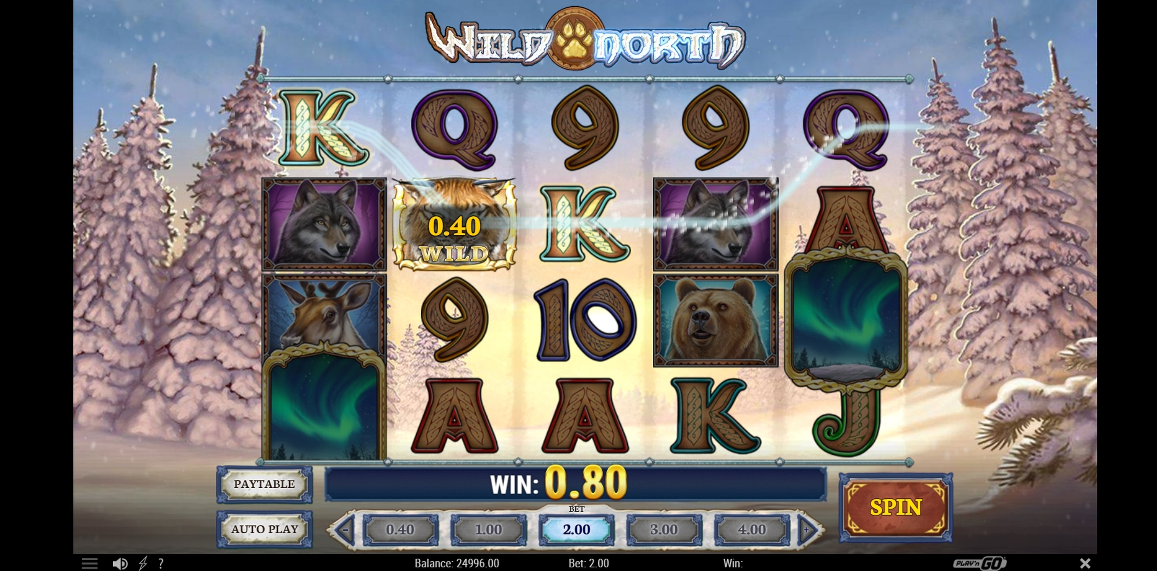 Win Money in Wild North Free Slot Game by Play'n Go
