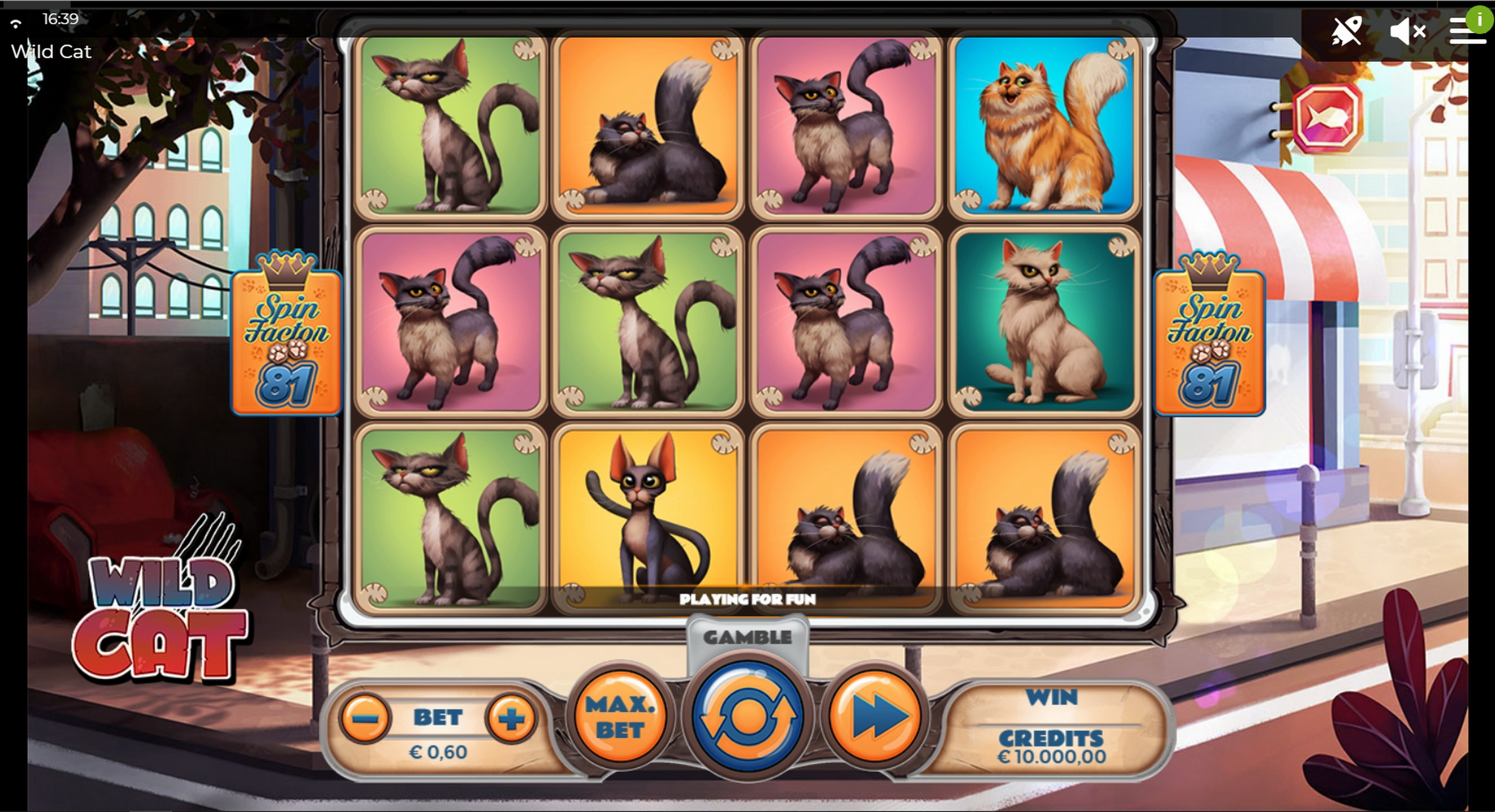 Reels in Wild Cat Slot Game by Spinmatic